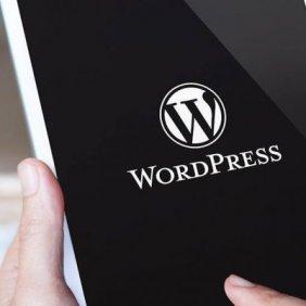 6 testes para avaliar com precisão o desempenho do site WordPress